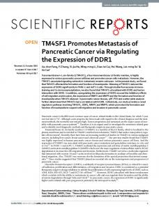 TM4SF1 Promotes Metastasis of Pancreatic Cancer ...