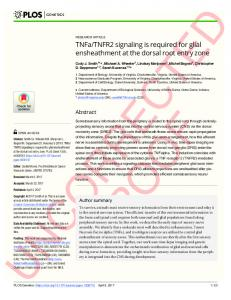 TNFa/TNFR2 signaling is required for glial ensheathment at ... - PLOS