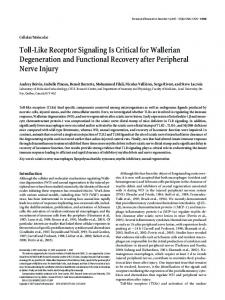 Toll-Like Receptor Signaling Is Critical for ... - Semantic Scholar
