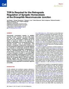 TOR Is Required for the Retrograde Regulation of ... - Cell Press