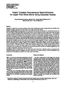 Totally Tubeless Percutaneous Nephrolithotomy for Upper Pole Renal ...