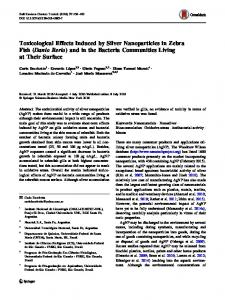 Toxicological Effects Induced by Silver Nanoparticles in Zebra Fish ...