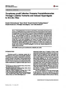 Toxoplasma gondii Infection Promotes ...