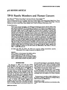 TP53 Family Members and Human Cancers - p53 WEB SITE - Free