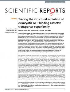Tracing the structural evolution of eukaryotic ATP