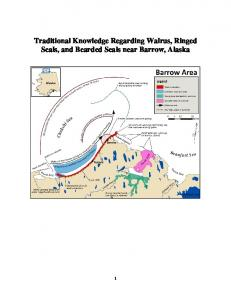 Traditional Knowledge Regarding Walrus, Ringed Seals, and Bearded ...