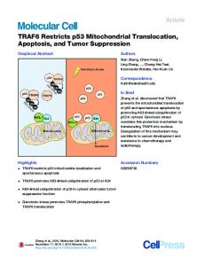 TRAF6 Restricts p53 Mitochondrial Translocation, Apoptosis, and ...