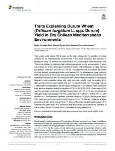 Traits Explaining Durum Wheat - Frontiers