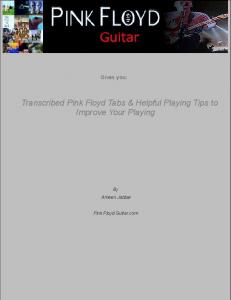 Transcribed Pink Floyd Tabs & Helpful Playing ... - Pink Floyd Guitar