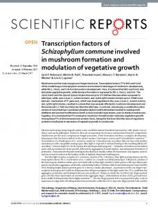 Transcription factors of Schizophyllum commune involved in ...