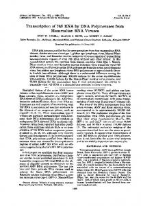 Transcription of 70S RNA by DNA Polymerases ... - Journal of Virology