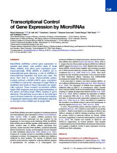 Transcriptional Control of Gene Expression by MicroRNAs