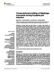 Transcriptional profiling of Medicago truncatula