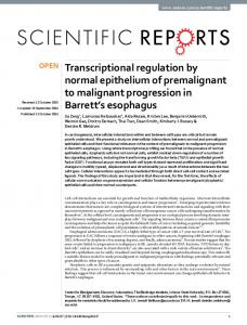 Transcriptional regulation by normal epithelium of ...