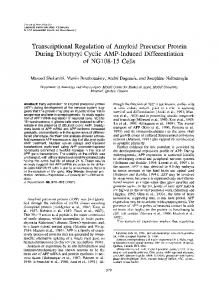 Transcriptional Regulation of Amyloid Precursor Protein During ...