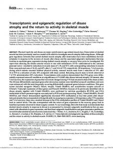 Transcriptomic and epigenetic regulation of disuse atrophy and the