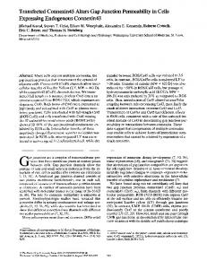Transfected Connexin45 Alters Gap Junction ... - BioMedSearch