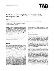 Transfection of germinating barley seed ... - Springer Link