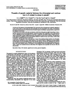 Transfer of genetic material between the chloroplast ... - Oxford Journals