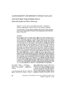 TRANSFORMATION AND MOTILITY OF HUMAN ... - Europe PMC