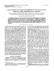 Transformation of Carbon Tetrachloride by Pseudomonas sp. Strain ...
