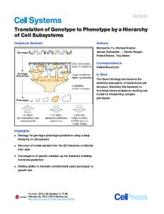 Translation of Genotype to Phenotype by a