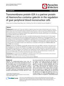 Transmembrane protein 63A is a partner protein ofHaemonchus ...