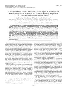 Transmembrane Tumor Necrosis Factor Alpha Is Required for ...