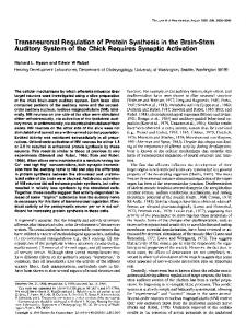 Transneuronal Regulation of Protein Synthesis in the Brain-Stem ...