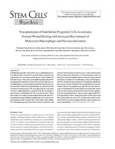 Transplantation of Endothelial Progenitor Cells Accelerates Dermal ...