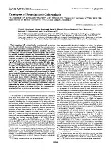 Transport of Proteins into Chloroplasts - The Journal of Biological ...