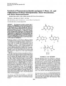 triphosphates of linear-benzoguanosine, linear-benzoinosine, and ...