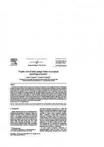 Trophic role of small pelagic fishes in a tropical upwelling ecosystem