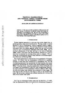 Tropical Grassmannian and Tropical Linear Varieties from ...