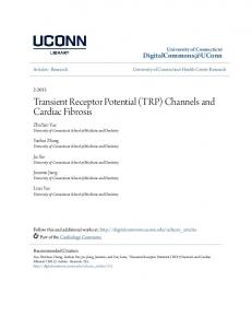 (TRP) Channels and Cardiac Fibrosis - DigitalCommons@UConn