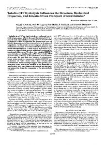 Tubulin GTP Hydrolysis Influences the Structure, Mechanical ...