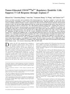 Tumor-Educated CD11b Ia Regulatory Dendritic Cells Suppress T Cell ...