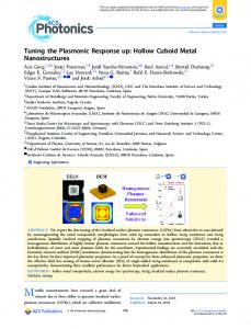 Tuning the Plasmonic Response up: Hollow ... - ACS Publications