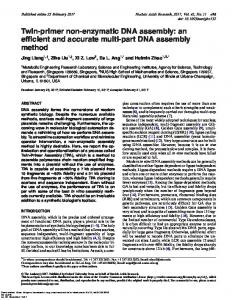 Twin-primer non-enzymatic DNA assembly: an