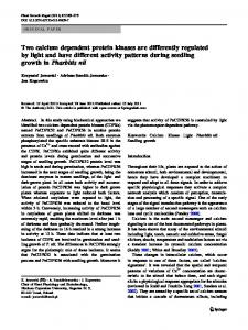 Two calcium dependent protein kinases are differently regulated by ...