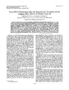 Two DNA Polymerases May Be Required for ... - Journal of Virology