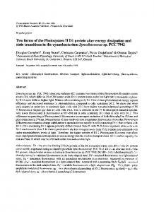 Two forms of the Photosystem II D1 protein alter energy ... - Springer Link