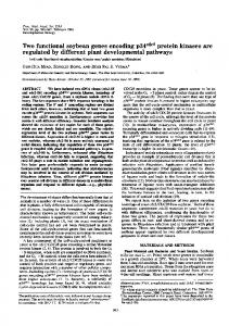 Two functional soybean genes encoding p34cdc2 protein kinases are ...