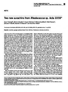 Two new aurachins from Rhodococcus sp. Acta 2259 - Nature