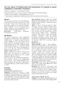 Two new species of Pseudocoremia and reinstatement of P. pergrata ...