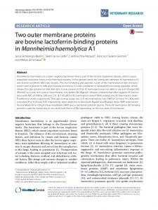 Two outer membrane proteins are bovine lactoferrin ... - Springer Link