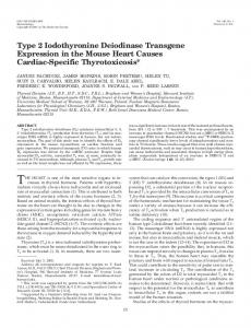 Type 2 Iodothyronine Deiodinase Transgene Expression in the Mouse ...