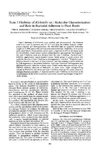 Type 3 Fimbriae of Klebsiella sp.: Molecular Characterization and ...