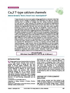 type calcium channels - Wiley Online Library