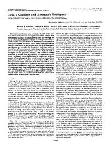 Type V Collagen and Bowman's Membrane - The Journal of Biological ...